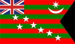 1917 में भारत का राष्ट्रीय ध्वज
