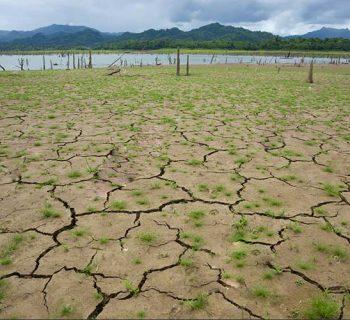 जलवायु परिवर्तन और कृषि