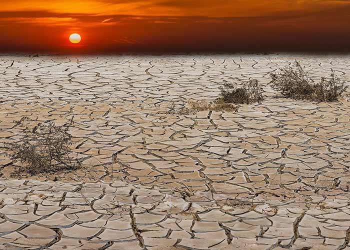 ग्लोबल वार्मिंग के परिणाम