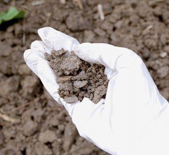 भूमि प्रदूषण के कारण होने वाले रोग