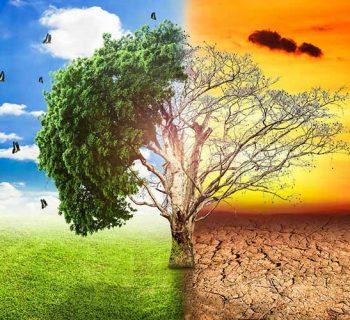 ग्लोबल वार्मिंग और जलवायु परिवर्तन