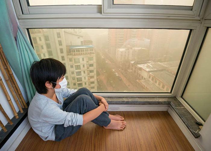 घर के अंदर के प्रदूषण को कैसे खत्म करें