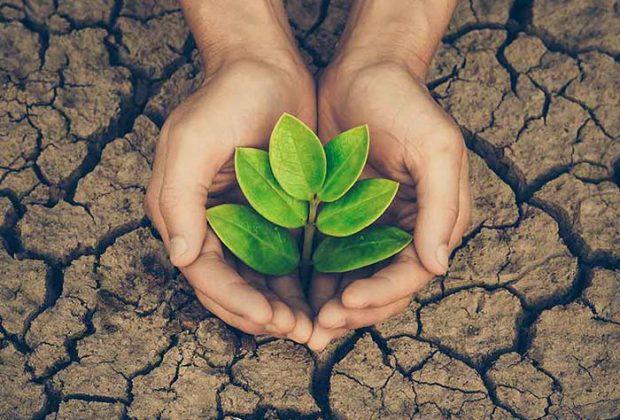 पर्यावरण को कैसे बचाएं