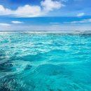 महासागरीय अम्लीकरण