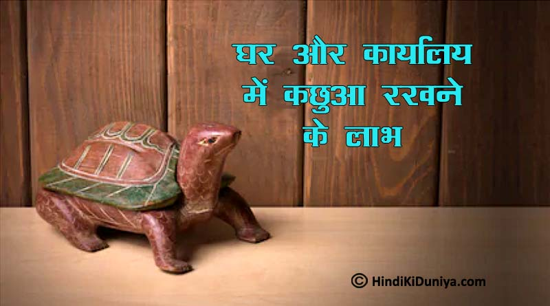 Benefits of Keeping Turtle Idol at Home and Office