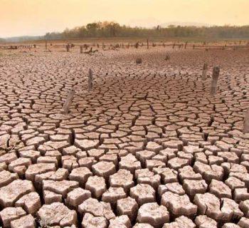 जलवायु परिवर्तन का असर और प्रभाव