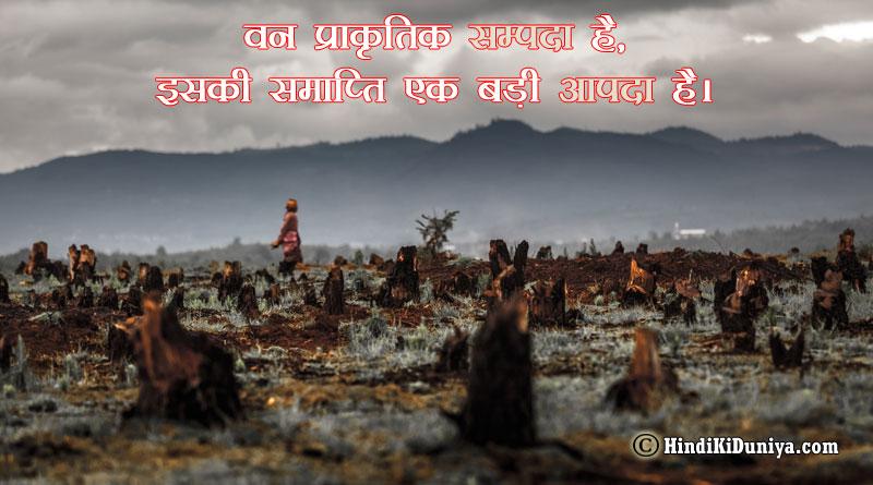 वन प्राकृतिक सम्पदा है, इसकी समाप्ति एक बड़ी आपदा है।